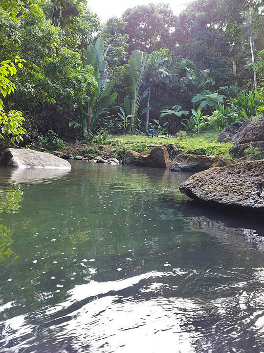 yunque rainforest puerto rico resorts hotels villas inns ecoresorts ecolodges ecotourism